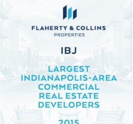 IBJ - Development_2015